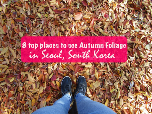 8 top places to see Autumn Foliage in Seoul, South Korea
