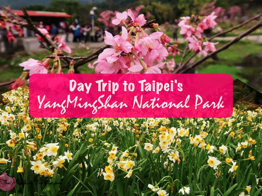 Day Trip to Yangmingshan National Park in Taipei, Taiwan
