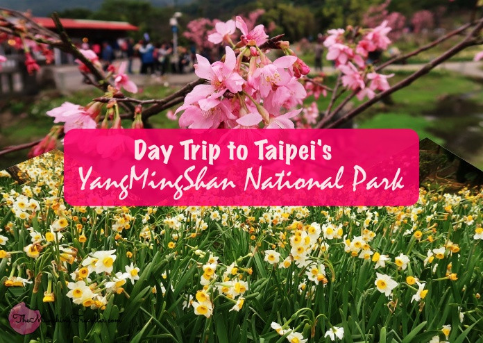 Day Trip to Yangmingshan National Park, Taipei, Taiwan