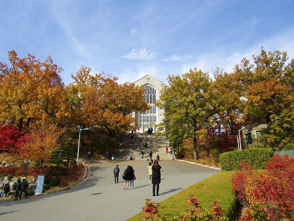 8 top places to see Autumn Foliage in Seoul, South Korea