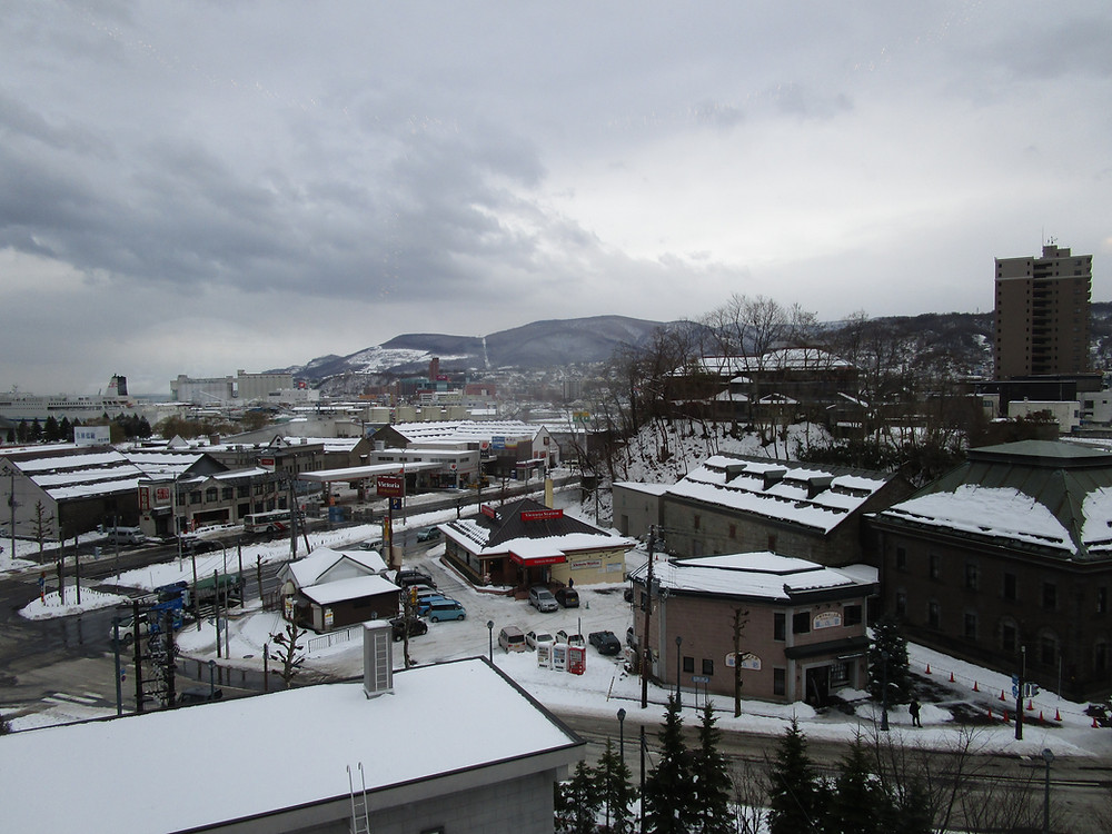 View of Otaru from the Le Tao Tower