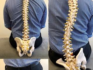 Ste vedeli, da bolečine v hrbtu ne izhajajo vedno iz hrbtenice?