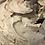 Thumbnail: Whipped Java Body Mousse