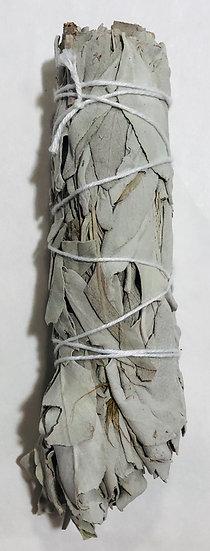 White Sage small Smudge Stick