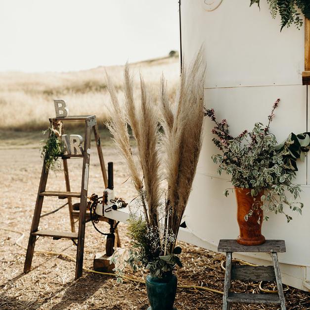 Tall Redwood Vase