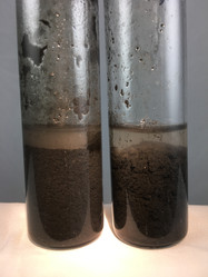 Flocculant Results In A Test Tube