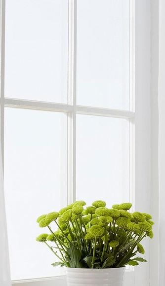 MS-Fensterputzer | Fensterputzer Düsseldorf