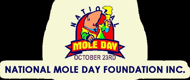 logo NMDF.png