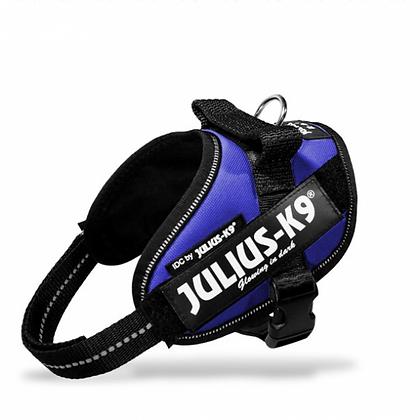 Julius-K9 IDC Powerharness in Blue