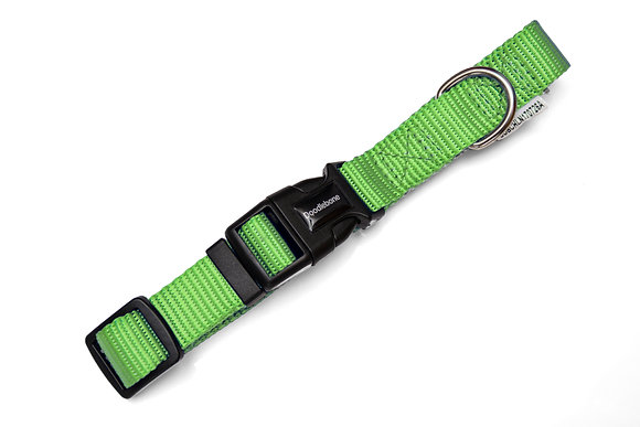 Doodlebone Bold Collar in Green