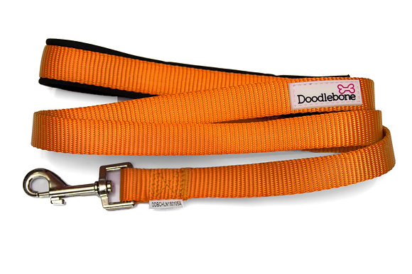 Doodlebone Bold Padded Dog Lead in Orange