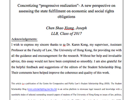 "Concretizing ""progressive realization""- A new perspective on assessing the state fulfillment on econ"