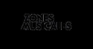 Zones musicales copie.png