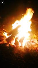 shaman michelle martin  www.MichelleIMartin.com spirits in the fire