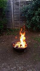 shaman michelle martin  www.MichelleIMartin.com spirits in the fire orbs