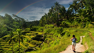 Destination TEFL Bali2.png