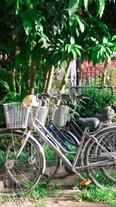 Isirafu Bicycle.jpeg