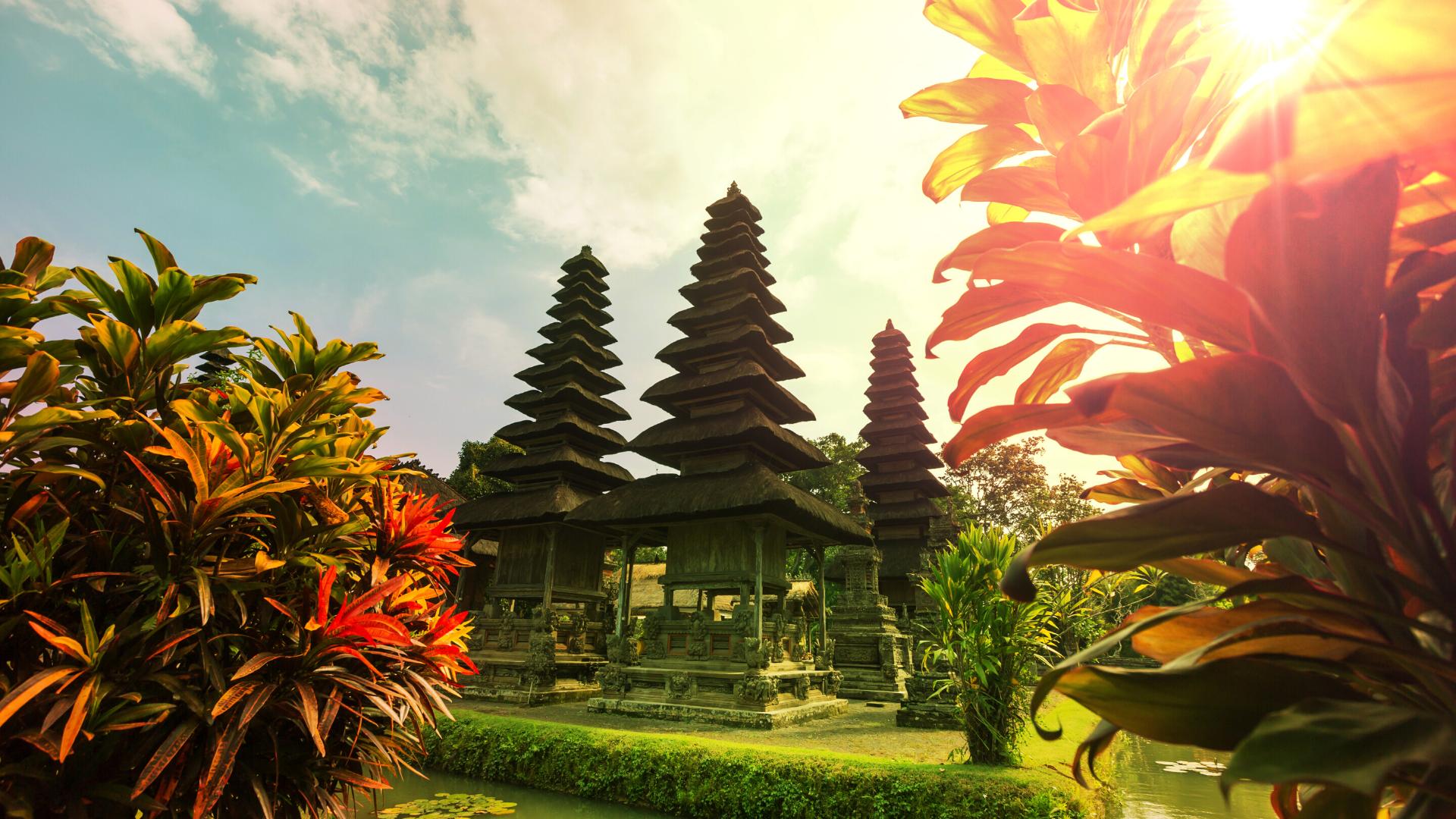 DestinationTEFL_Bali_4