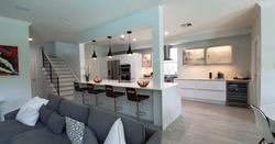 kitchen remodel with modern cabinets