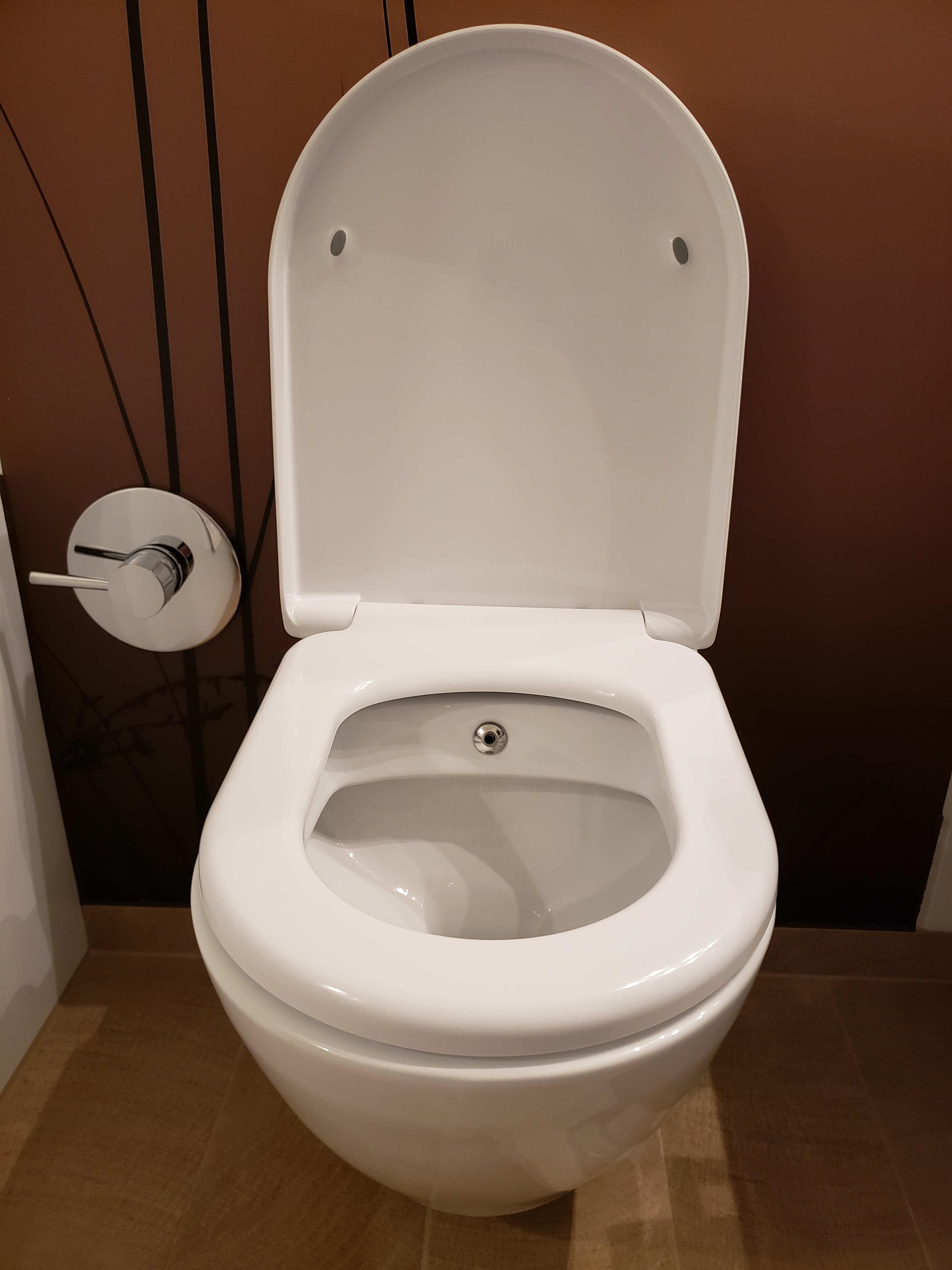 bidet toilet with temperature mixer