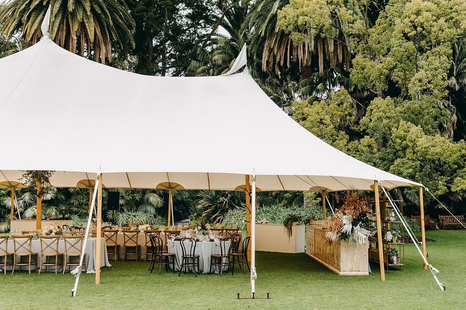 WEDDINGUPMARKET-MAY2019-TP&CO-HIGHLIGHTS