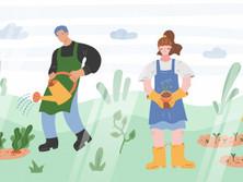 Bli med å pynt fellesområde med jord/bark
