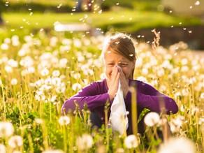 Traitement naturel des allergies alimentaires, saisonnières et respiratoires.