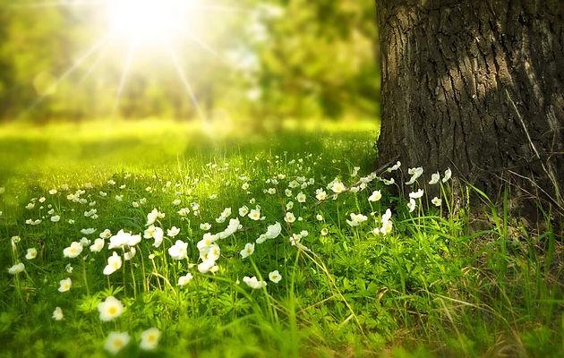 soins énergétiques , libération des mémoires karmiques