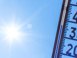 Soutien à la coordination : Épisodes de fortes chaleurs