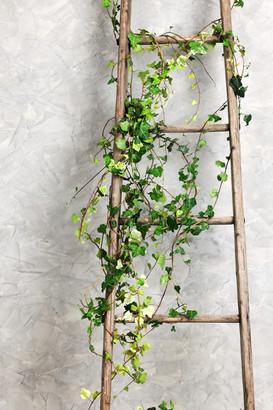 old-wooden-ladder-PK9RLAW.jpg