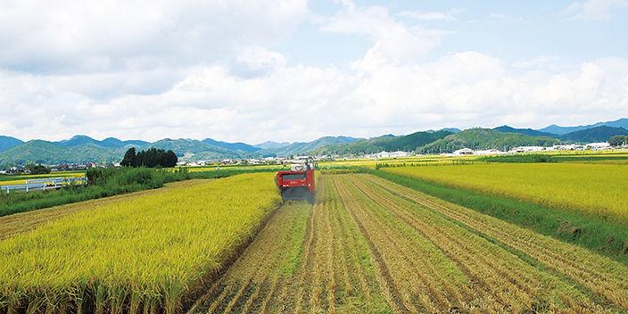img_farm_004.jpg
