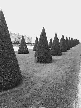 Versaille Gardens.jpg