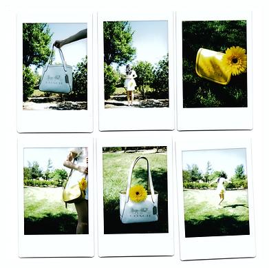 polaroid set 1.png