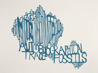 2014 / Ilana Halperin / Autobiographical Trace Fossils / Patricia Fleming Projects