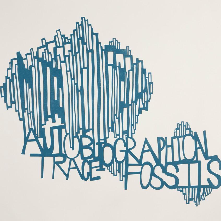 Ilana Halperin, Autobiographical Trace Fossils, 2014