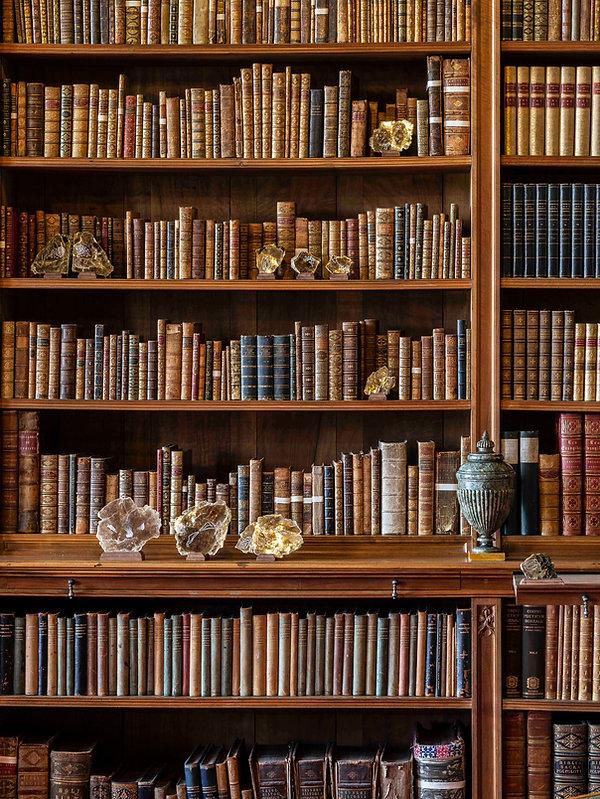 The Library (detail), Ilana Halperin, 20