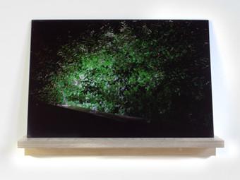 2013 / Patrick Jameson / Studio Experiments / Patricia Fleming Projects