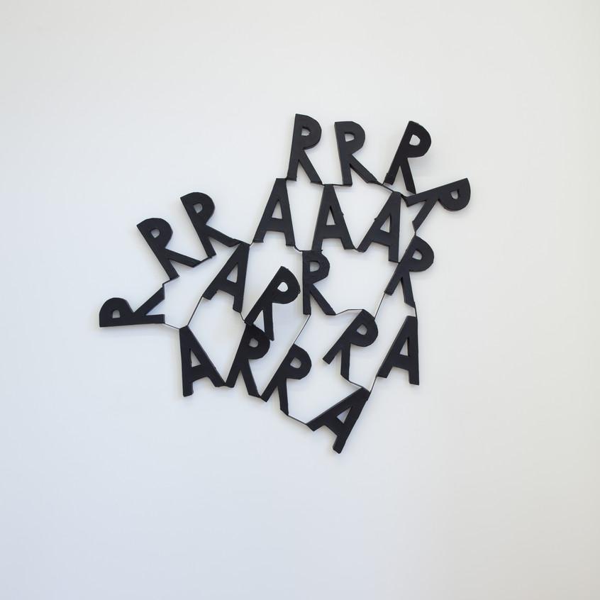 David Sherry, RRRAAA, 2013