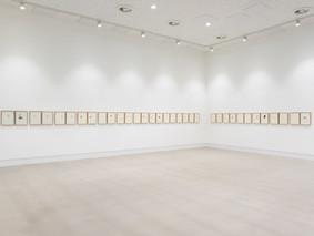 2019 / Ilana Halperin / Minerals of New York / The Blenheim Walk Gallery, Leeds Arts University