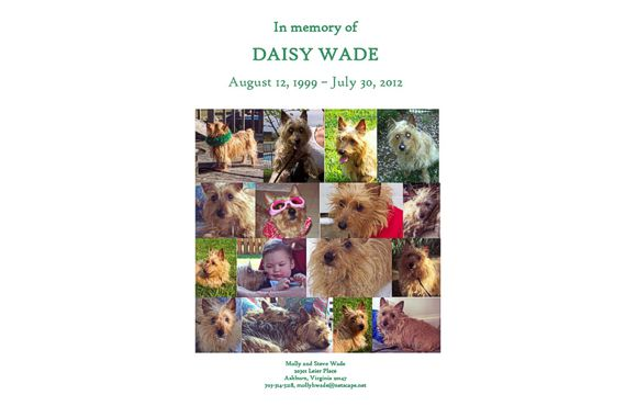 In Memory of Daisy Wade