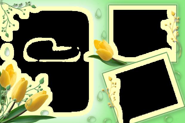 коллаж-шаблон-png-3.png