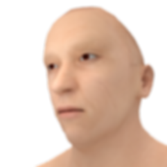 3333333333.png