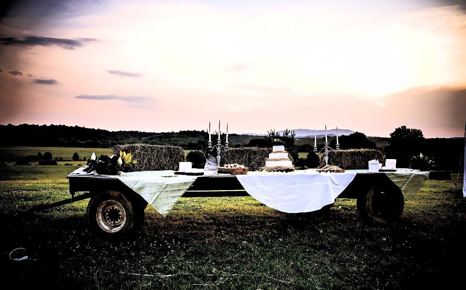 wedding cake wagon_edited.jpg