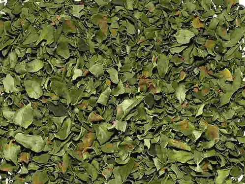 Moringablätter Biotee