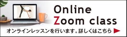 Online zoom class