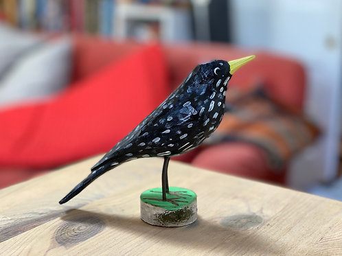 Wooden starling