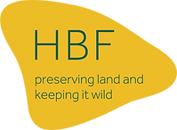 HBF_Transparent Background-79.png