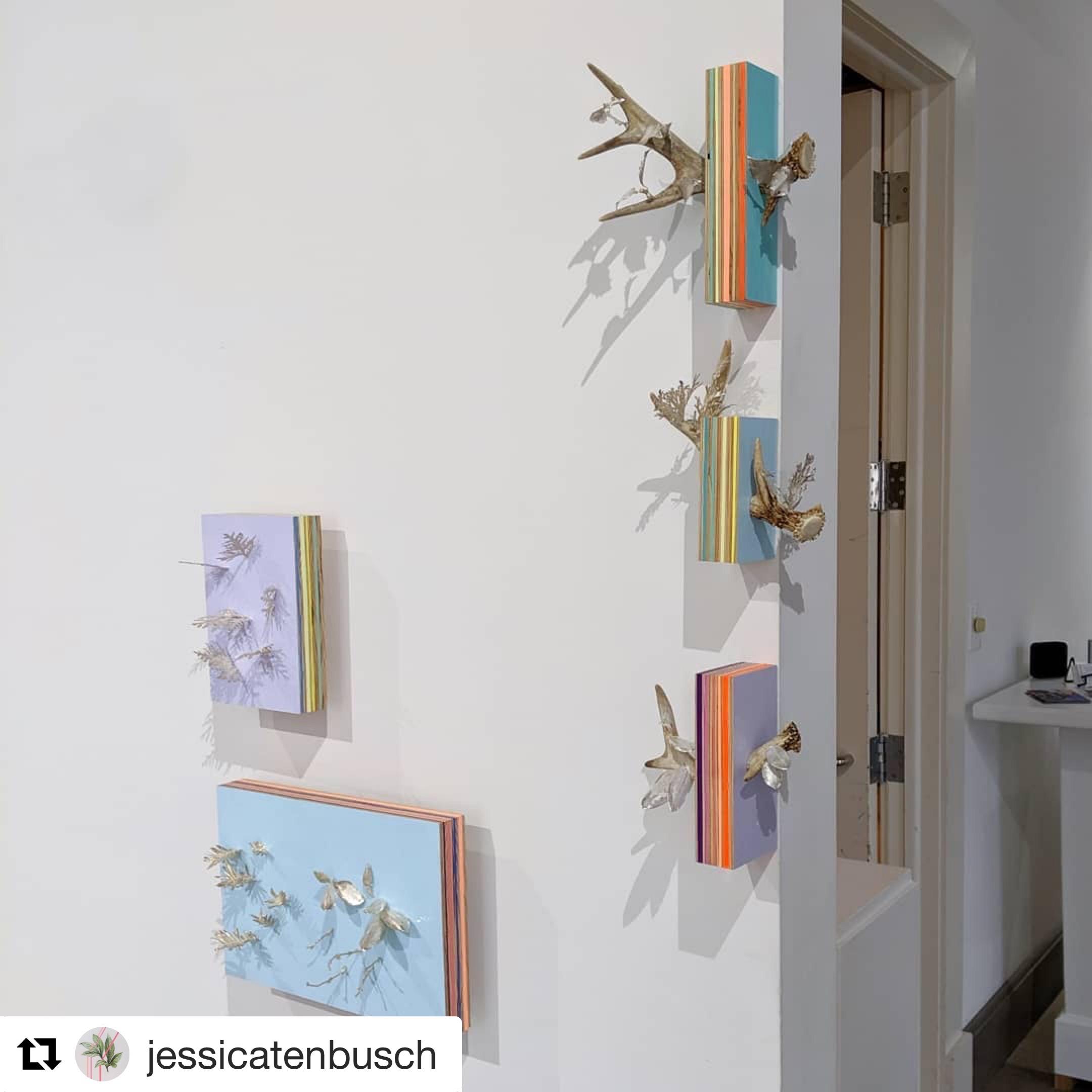 Jessica Tenbusch