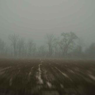 Walz- Landscape (small)-17.jpg