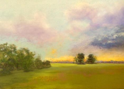 "Nina Thomson (Sacramento), Morning Glory, 2019 Soft pastel on artist sanded paper, 18"" x 24"" $225"